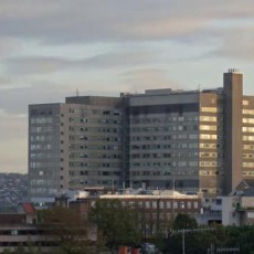 Royal Hallamshire Hospital Sheffield